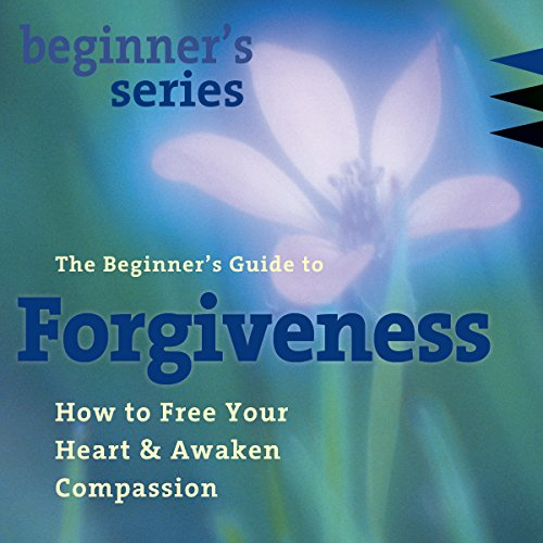 The Beginner's Guide to Forgiveness copertina