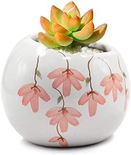 Dahlia Slanted Floral Hand Painted Ceramic Succulent Planter/Plant Pot/Flower Pot/Bonsai Pot #5