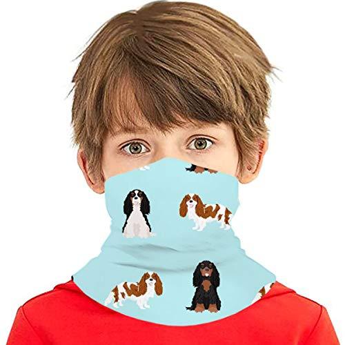 PGTry - Pañuelo multiusos para niños y niñas, protección UV, para cuello, pasamontañas, para verano, ciclismo, senderismo, deportes, al aire libre, Cavalier King Charles Spaniel mixto Abrigos de perro azul claro