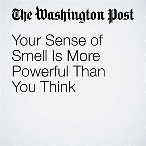 Your Sense of Smell Is More Powerful Than You Think copertina