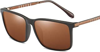 LUKEEXIN Special Leg Vintage Durable Men's Polarized Sunglasses Full Rimmed UV400 Protection Driving Cycling Running Fishing Golf (Color : Brown)