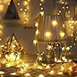 DJM4.0 Star String Lights 100 LED 33 FT Plug in Fairy Bedroom Twinkle Lights Waterproof Extendable for Indoor Outdoor Wedding Party Christmas Tree New Year, Garden Decoration Warm White