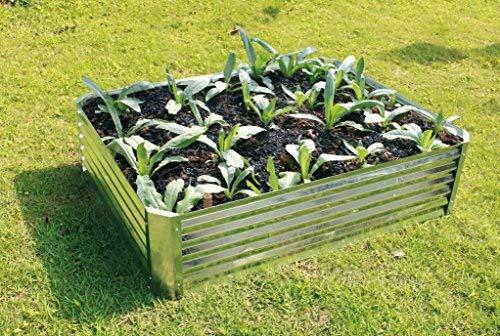 Hansons Garden Galvanised Raised Bed