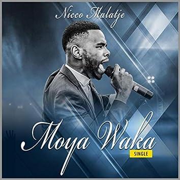 Moya Waka