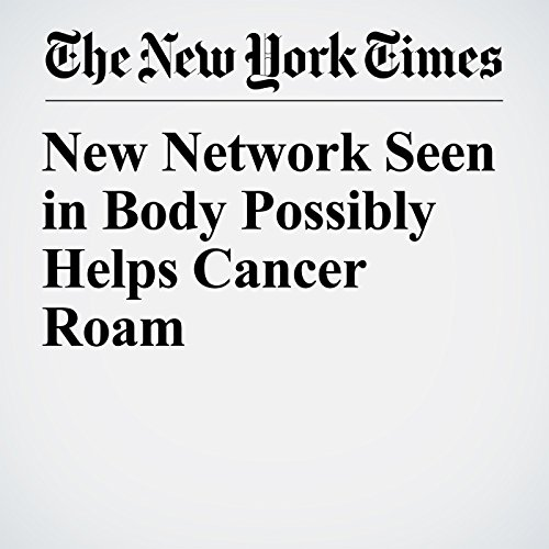 New Network Seen in Body Possibly Helps Cancer Roam copertina