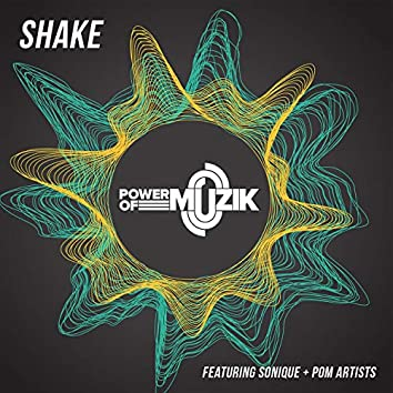 Shake (feat. Sonique)