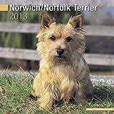 norwich terrier calendar