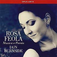 MUSICA E POESIA:ROSENBLAT