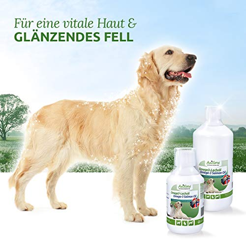 AniForte Omega-3 Lachsöl 1 Liter für Hunde, Katzen und Pferde, Kaltgepresst, Reich an EPA, DHA und ALA Fettsäuren, Natur Pur, Barf Ergänzung - 4