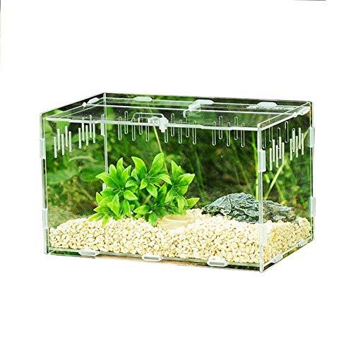 Easy-topbuy Transparente Reptilienzuchtbox, Fütterungsbox Aus Acryl Mit Belüftungsöffnungen Für Spinnen/Skorpione/Gottesanbeterinnen Kletterterrarium Für Haustiere 15x15x25CM