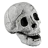 Myard Fireproof Imitated Human Fire Pit Skull Gas Log for NG, LP Wood Fireplace, Firepit, Campfire, Halloween Decor, BBQ (Qty 1, White)