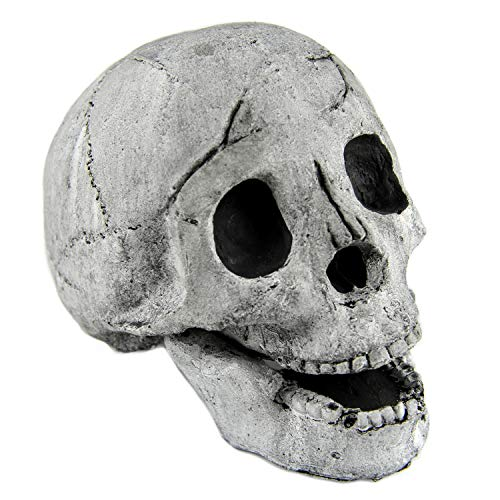Myard Fireproof Imitated Human Fire Pit Skull Gas Log for NG, LP Wood Fireplace, Firepit, Campfire, Halloween Decor, BBQ (Qty...