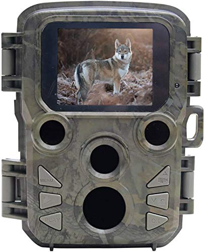 Braun Germany Scouting Cam Black500 Mini Wildkamera Black LEDs Grün