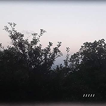 a hymn in the dark