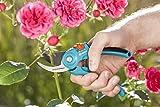 Gartenscheren Test