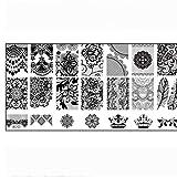 Piatti degli stampini timbratura dell'arte del chiodo della mascherina del bollo Un set per unghie con Fiore modello del merletto del manicure fai da te del piatto di immagine