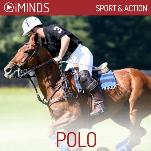 Polo audiobook cover art