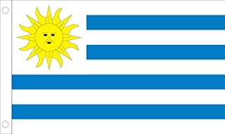 Allied Flag Outdoor Nylon Uruguay United Nation Flag 4 到 6 英尺