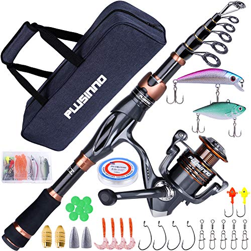 Best travel fishing rod