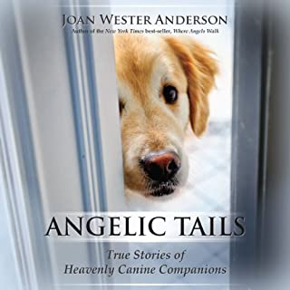 Angelic Tails audiobook cover art