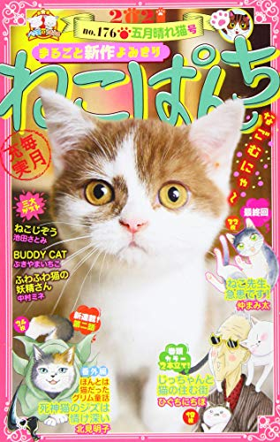 ねこぱんち 五月晴れ猫号 (にゃんCOMI廉価版コミック)