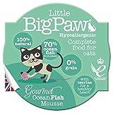 Little Big Paw Cat Gourmet Tender Atlantic Ocean Fish Mousse Pot 8x85gm