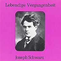 Joseph Schwarz Opera Arias by VARIOUS ARTISTS (1995-02-07)