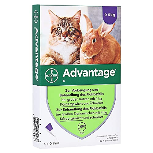Bayer Vital GmbH-Tiergesundheit -  ADVANTAGE 80 mg f.