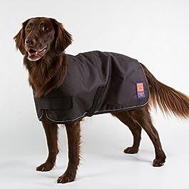 Ginger Ted Shower Waterproof Dog Coat