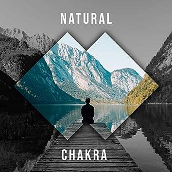 Natural Chakra, Vol. 3