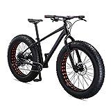 Mongoose Argus Sport Fat Tire Bike, 10-Speed, 26-inch Wheels, Mens Large, Black,...