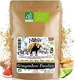 Nabür - Polvo de Jengibre BIO 250 gr  Jengibre Molido Organico | Fresco, Rico, Afrutado  Cocinar, Pastelería, Batido, Jugo, Infusión
