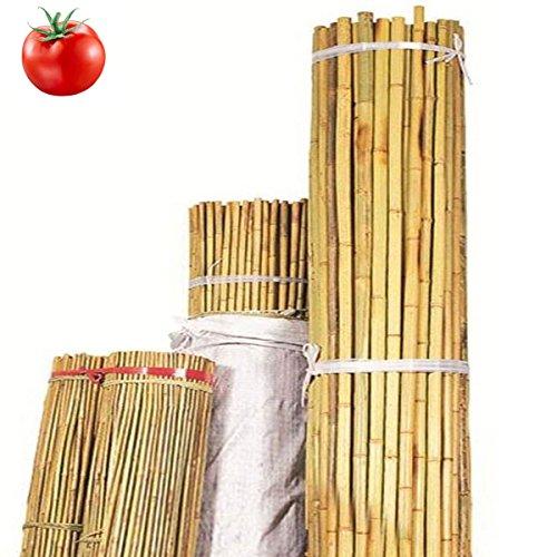 STI Canne di Bamboo 10 pz riutilizzabili per Sostegno ortaggi pomodori h.120 cm