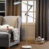 TAYIBO Beauty Schreibtischlampe,Kühle weiße Schönheitslampe, Nageltattoo, LED-Stehlampe, Schlafzimmeraugenschutz -500W_A weiß