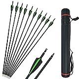 SHARROW 12x Carbonpfeile 30.5 Zoll Bogenpfeile Jagd Pfeile für Bogen Spine 500 für Recurvebogen Compound Bogen (Grün+Köcher)