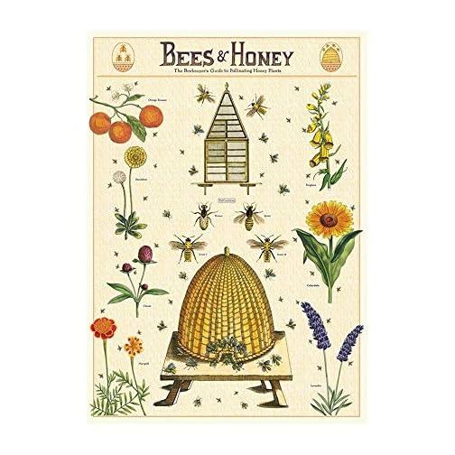 Cavallini & Co. Decorative Paper Sheet, Bees & Honey 2, 20 x 28 inch Italian Archival Paper  