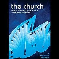 A Psychedelic Symphony [DVD]