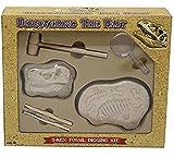 T Rex Dinosaur Fossil Digging Kit - Juego de Arqueología para Niños - Boys Crafts