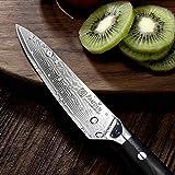 PAUDIN Damast Messer Allzweckmesser 13cm - scharfe Japanisches AU10 Küchenmesser mit ergonomischem Micarta-Griff - 2