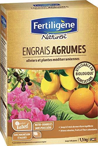 Naturen Engrais Agrumes 1,5 kg