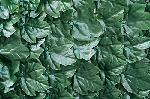 Verdemax 5634 1.5 x 3 m Verdecor Extra haie avec Feuilles comme Ivy