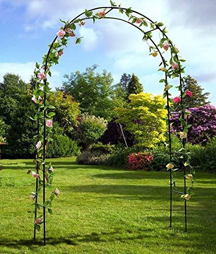 MTB Decorative Metal Garden Arbor