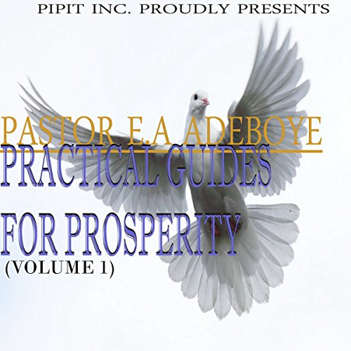 Practical Guides for Prosperity, Book 1 audiobook cover art