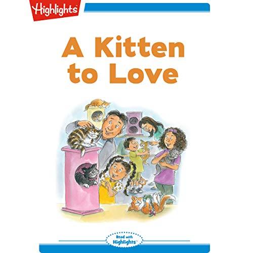 A Kitten to Love copertina