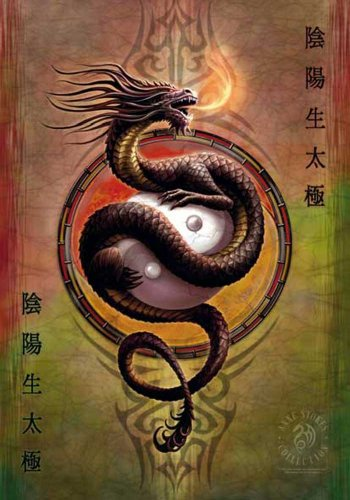 empireposter Anne Stokes - Yin Yang Protector - Posterflagge 100% Polyester - 75x110 cm
