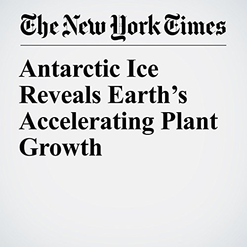 Antarctic Ice Reveals Earth's Accelerating Plant Growth copertina