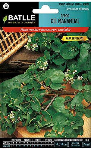 Semillas Aromáticas - Berro del Manantial - Batlle