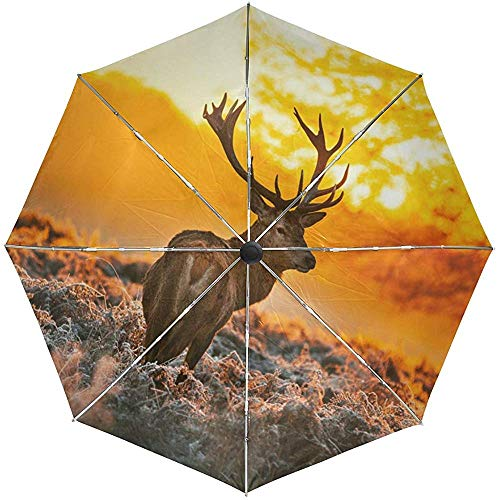 Automatische Regenschirme Funny Animal Deer Anti-Rutsch-Windproof Compact Regenschirm für Frauen Männer