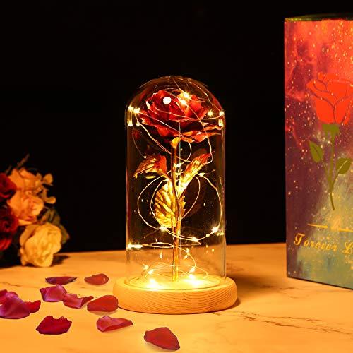 PREUP Rose Handgefertigt Konservierte Plastik Künstliche Rosefür Frau Freundin/Geburtstag/Hochzeitstag/Jahrestag (Golden)