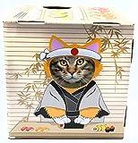 DoyenCat Fun Box with Scratching Board (Sushi)
